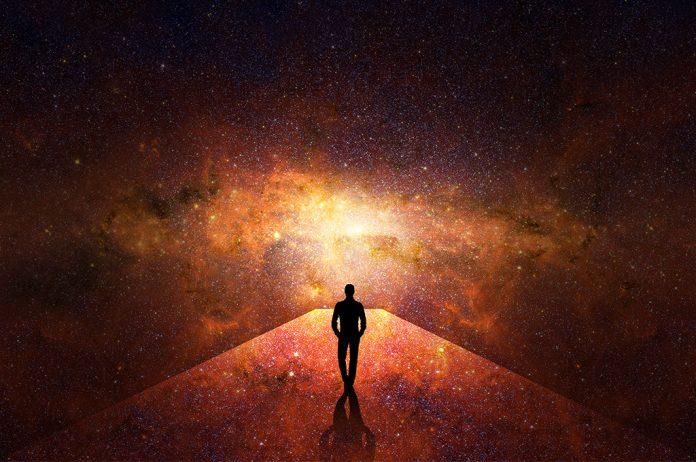 มนุษย์และวิวัฒนาการ